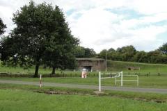 Immerhof (2)