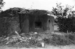 stav v roce 1938